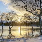 朝の小野川湖