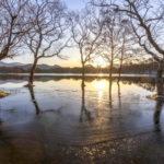 冬の小野川湖